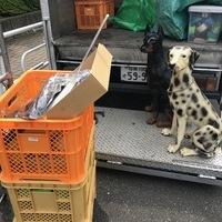 神奈川県相模原市中央区橋下にて、置物買取ました。のサムネイル