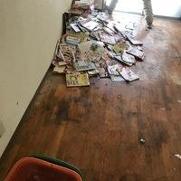 神奈川県厚木市にて、ゴミ屋敷の片付けをしました。のサムネイル